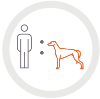 Greyhound and person icon