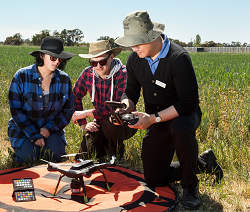 3 farmers in a pasture looking at monitoring equipment
