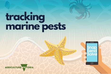 Tracking marine pests logo