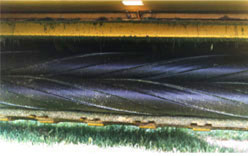 Close-up of black roller on mower conditioner