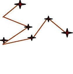 Randomised zig zag pattern across a paddock with assessment points at each angle