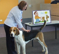 Pet educator showing how to touch the dog, educational materials in background