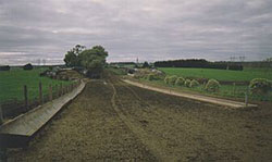 Feedpad with two types of trough: one is concave metal sections joined to form the trough, the other is a square ridge of concrete similar to concrete kerbing