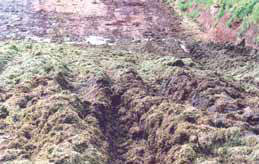 Deep groove in a muddy silage stack