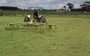 Farmer on a tedder in paddock
