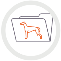 Icon of greyhound and paper folder