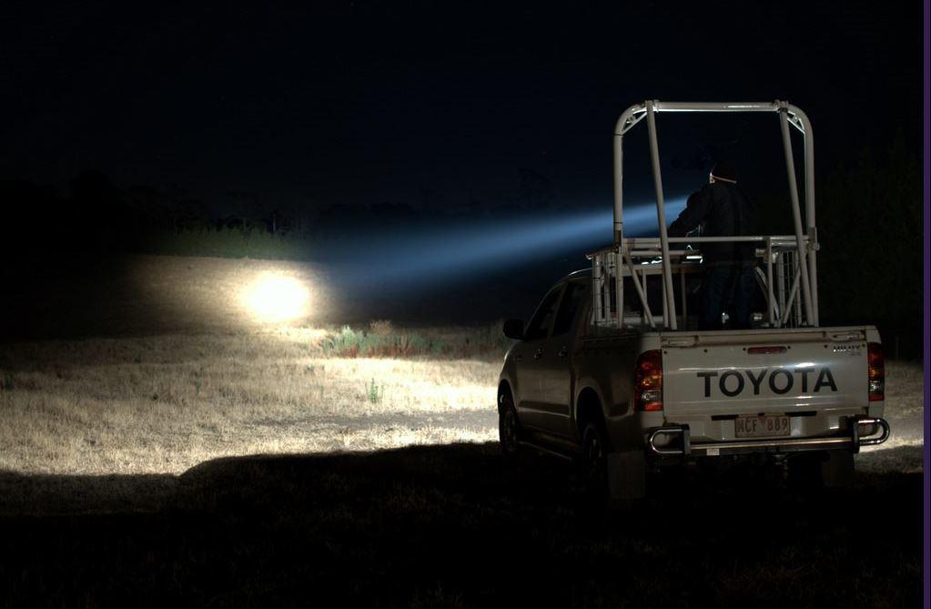 Ute shining spotlight beam into dark paddock
